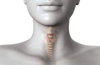 6 продуктов, которые вызывают заболевания щитовидки