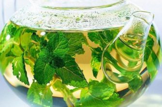 Мятный чай. Вот как правильно употреблять мятный чай, чтобы избавиться от отёков, вздутия живота, лишнего веса и не только!
