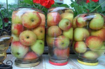 Самый простой рецепт моченых яблок. До зимы не достоят, сразу разлетаются!