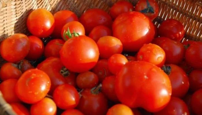 Никогда бы не подумала, что этот рецепт консервирования помидоров будет у меня самым любимым