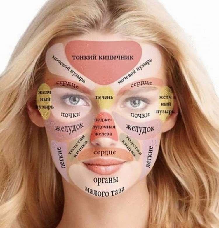 Как отражаются внутренние органы на лице