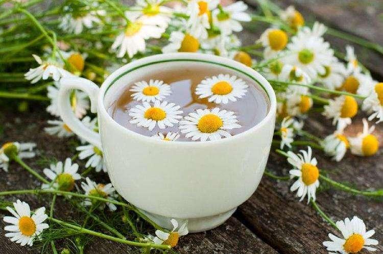 какие есть травяные чаи