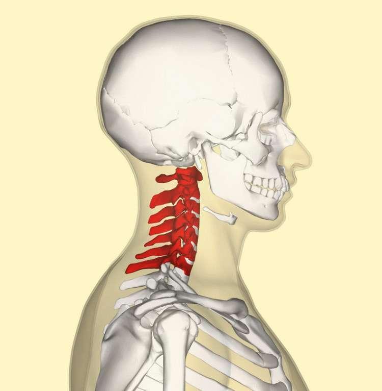 Как избавиться от головной боли: Техника от остеопата