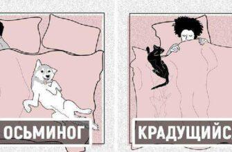 10 основных позиций для сна домашних животных с человеком, и что они значат для наших питомцев