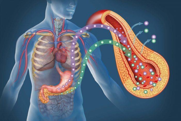 Инсулинорезистентность: как распознать и лечить